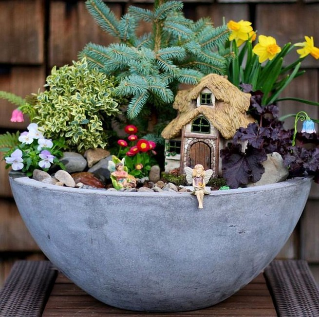 17 Beautiful Fairy Garden Plants Ideas For Around Your Side Home 30