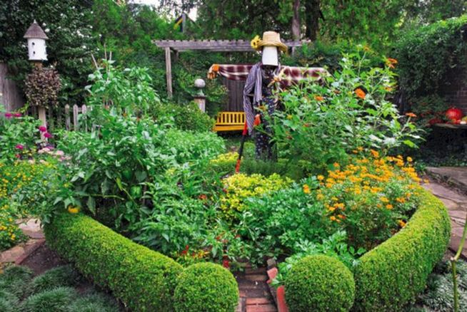 15 Wonderful Edible Plants Ideas To Enhance Your Backyard Garden 15